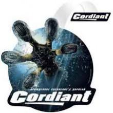 Cordiant Professional расширяет ассортимент прицепных грузовых шин>