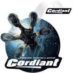 Cordiant Professional расширяет ассортимент прицепных грузовых шин